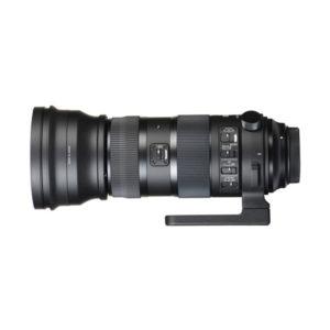 Sigma 150-600mm f5-6.3 DG OS HSM Sport Lens   TC-1401 Converter (Nikon F Mount)